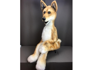 Maliki The Dingo Custom Puppet