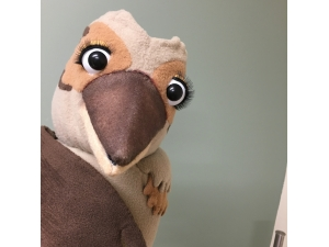 Custom Kookaburra puppet