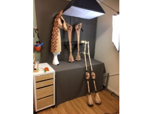 Lion King giraffe Work in Progress Picture